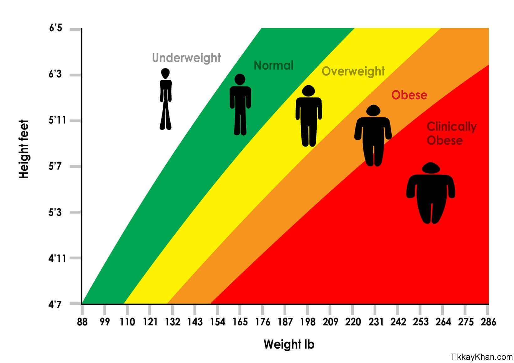 Determine Obesity