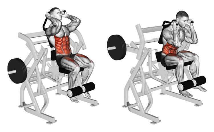 Abs Workout Bodybuilding With Machine Crunch