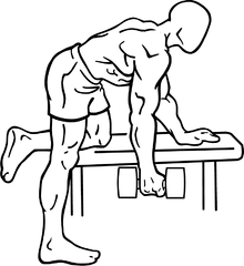 Hyperextension Row With Dumbbell