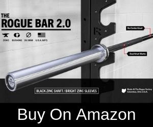 20 kg Rogue Bar 2.0