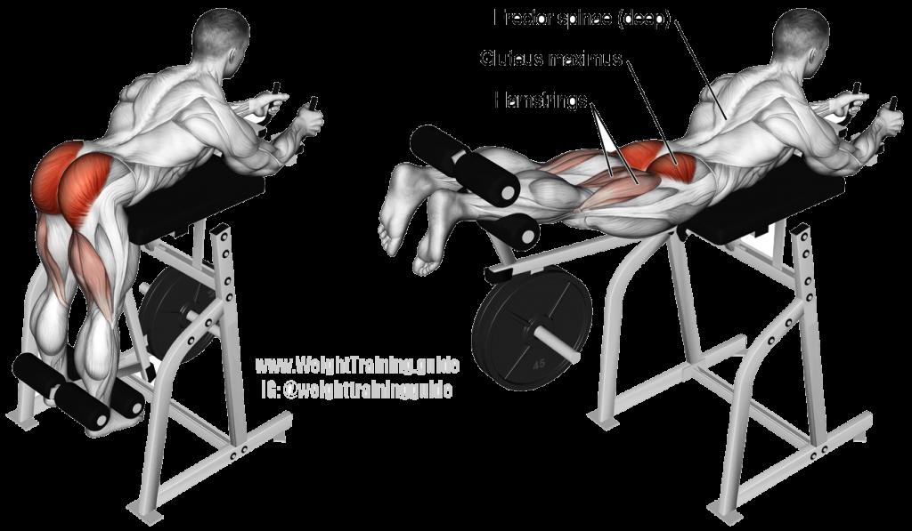 Machine Neck Hyperextension