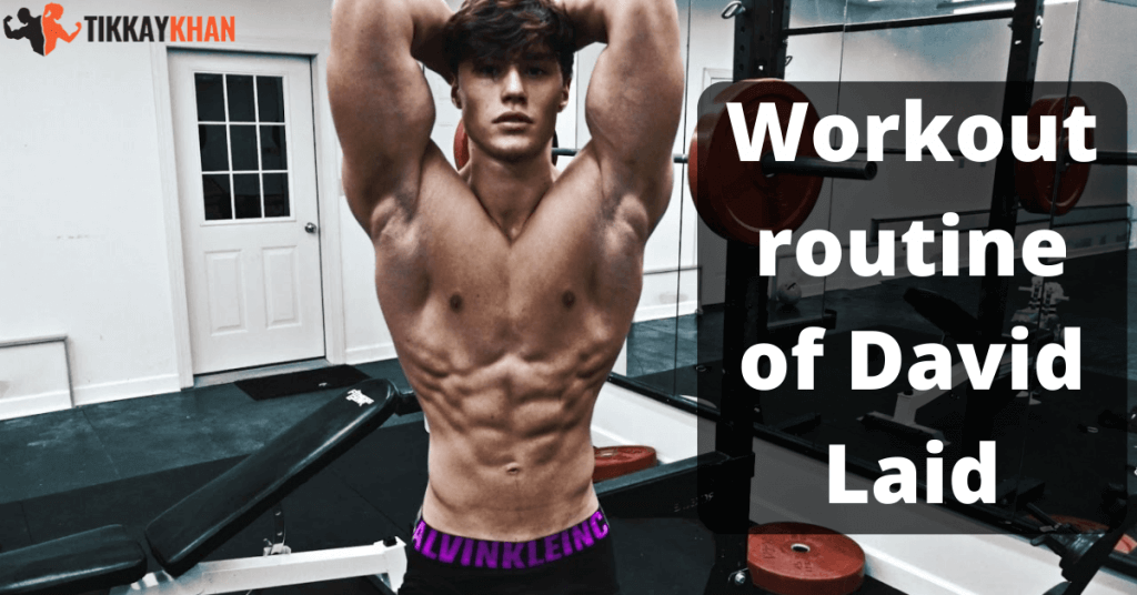 Workout routine of David Laid