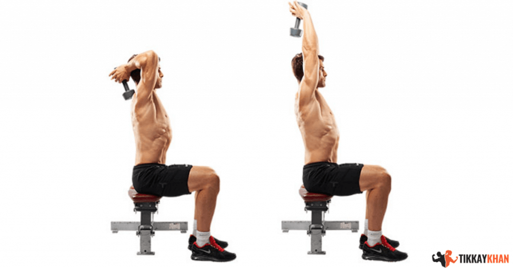 seated dumbbell overhead triceps extensions